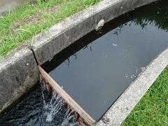 用水路から水を取る