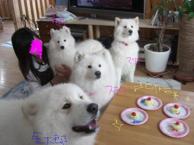 その3待ちきれないケーキ.jpg