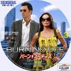 BurnNotice-S2-ar03