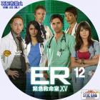 ER-S15-a12