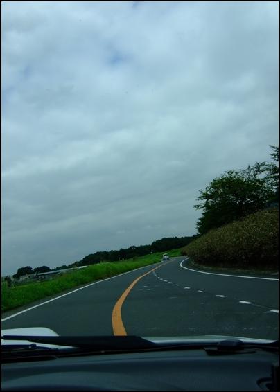 2008_08180001.jpg
