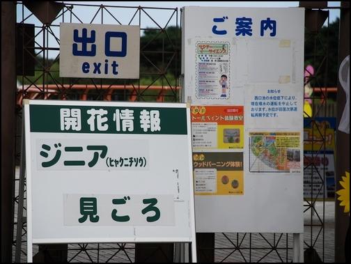 2008_08180025.jpg