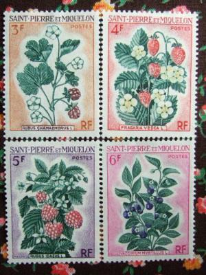 stamp110.jpg