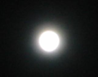 光を放つ月