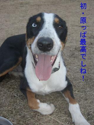 2009初練習にて(キラ)