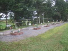 2011メジロっ仔達のお墓(南東)