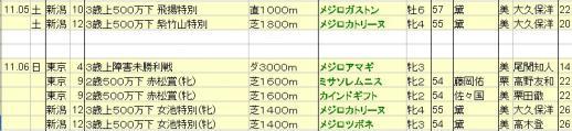 2011111213netkeiba想定