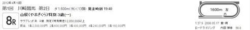 20120410川崎競馬8R