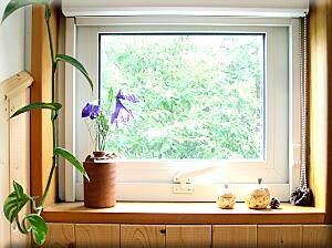 P727庵の窓