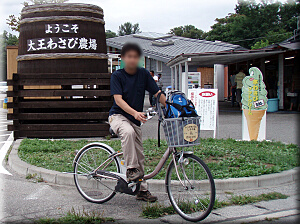 P902daiouwasabi.jpg