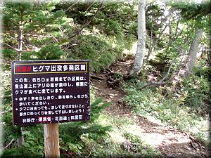 P9230kuma-chuui.jpg