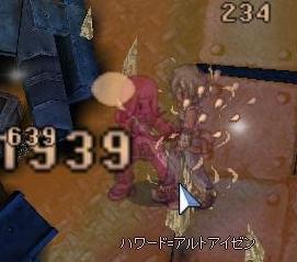 229.jpg