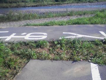 SA390097_20080910195205.jpg