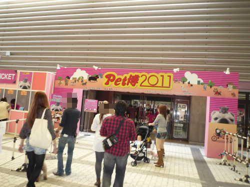 DPP_01_20111002202712.jpg