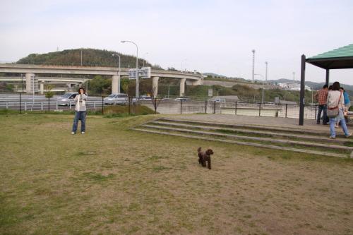 DPP_02_20100513000439.jpg