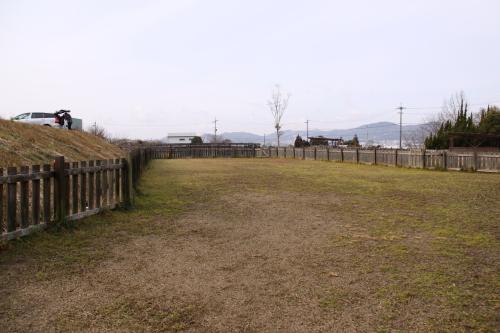 DPP_02_20120126231645.jpg