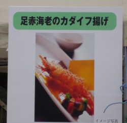 DPP_04_20101201001430.jpg