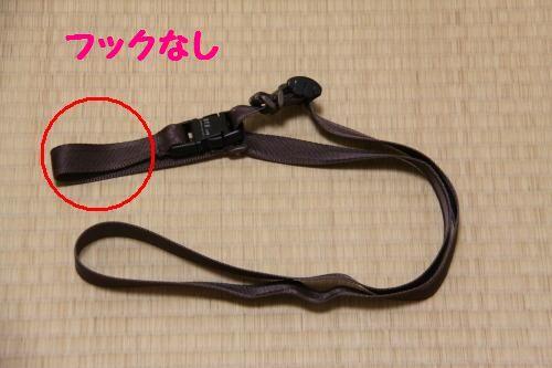 DPP_05_20110120000043.jpg