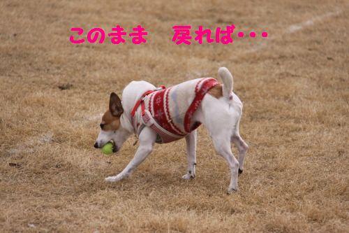 DPP_07_20110304001008.jpg