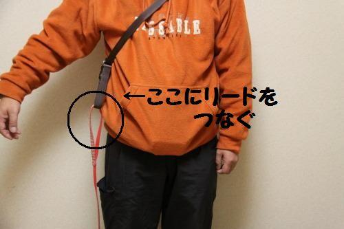 DPP_09_20110120000042.jpg
