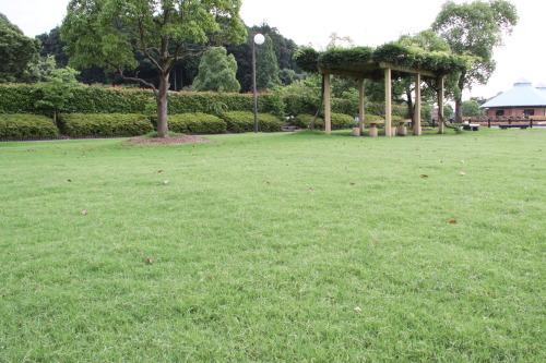 DPP_09_20110711230612.jpg