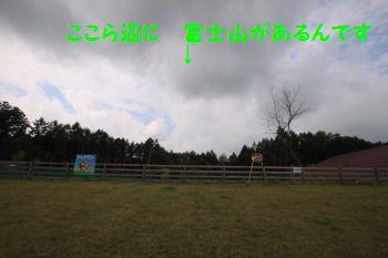 DPP_11_20101003193229.jpg