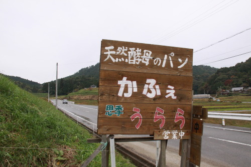 DPP_14_20111116233832.jpg