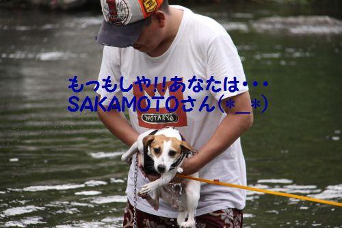 DPP_19_20100818234741.jpg