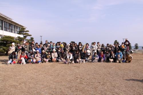DPP_19_20110127210410.jpg