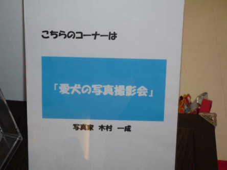 DPP_26_20110814123112.jpg