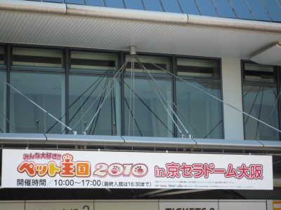 DPP_2_20100517003529.jpg