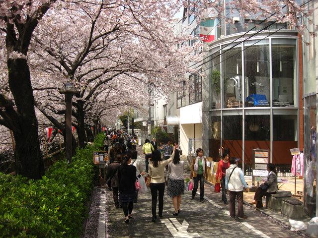 nakameguro014.jpg