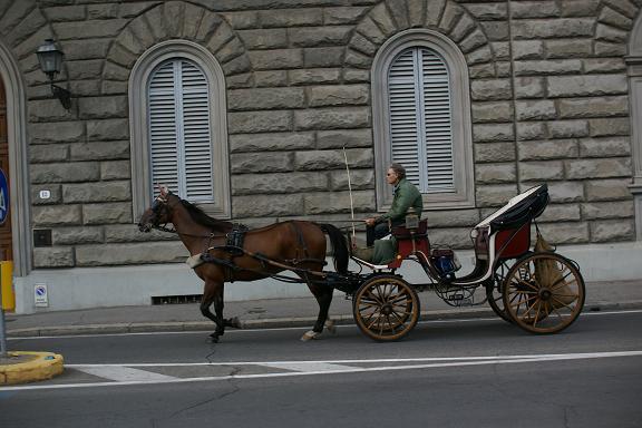 horse carrige