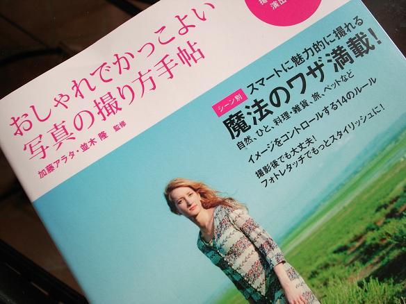 hidoi shashin guide book_2011