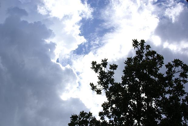 fuyujikan_2010.jpg