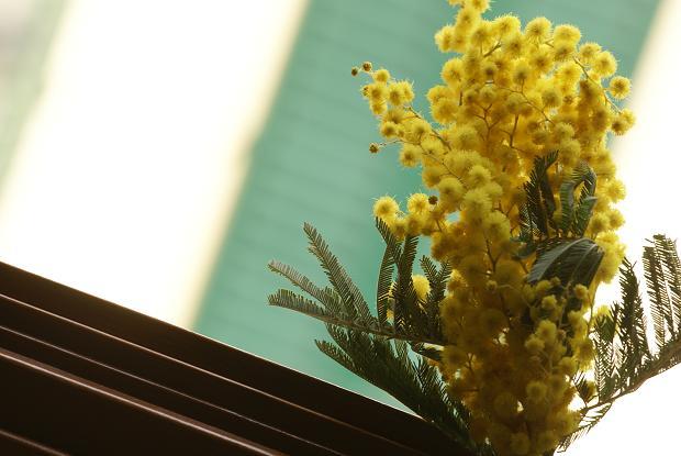 wide_20120305234819.jpg