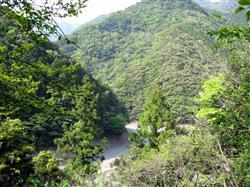 中国資本が触手を伸ばした水源林
