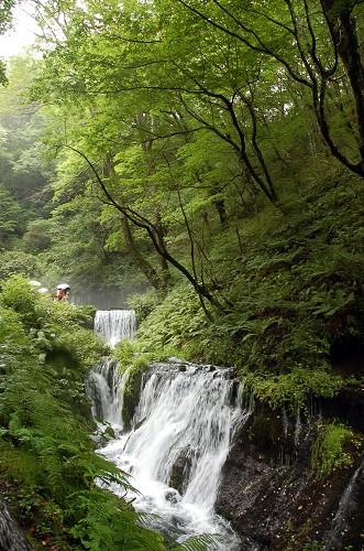 DSC_2401滝