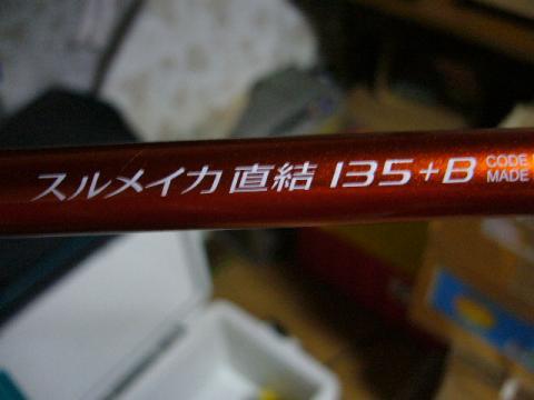 P1040701_convert_20090418233218.jpg