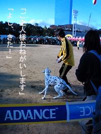 20061112201444.jpg