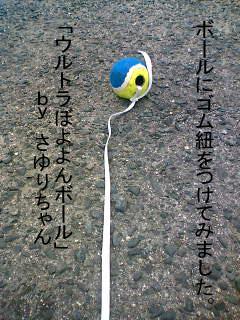 20070121220342.jpg