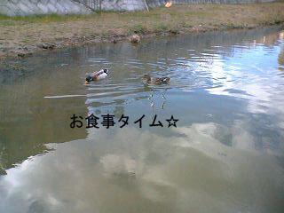 20070312224551.jpg