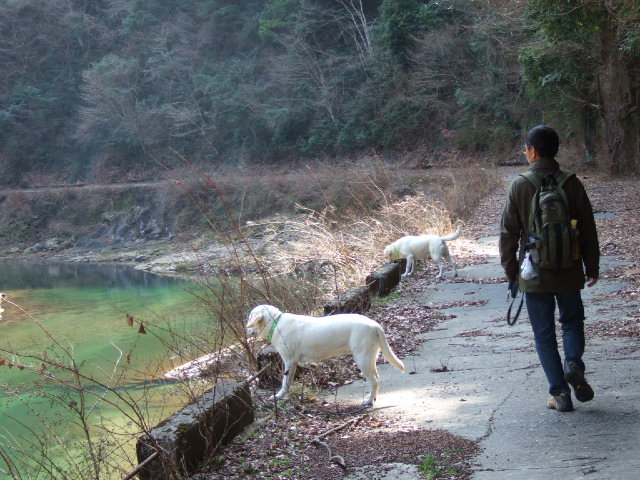 2009_0318sakura0056.jpg