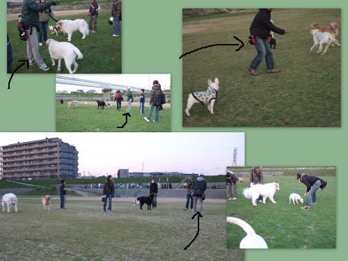 snap_suzami_20094511950.jpg