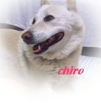 chirosmile