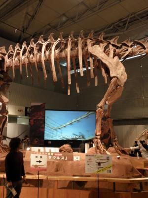 マメンキサウルス1