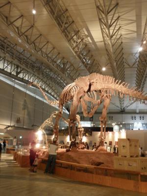 マメンキサウルス2