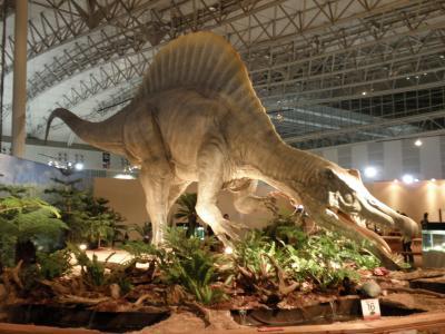 スピノサウルス1