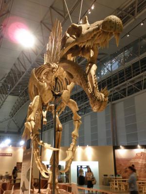 スピノサウルス4