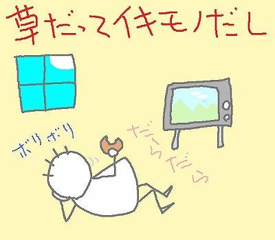 s-100620sabori.jpg
